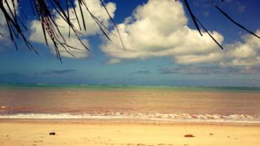 Best beaches of Maceió Guide