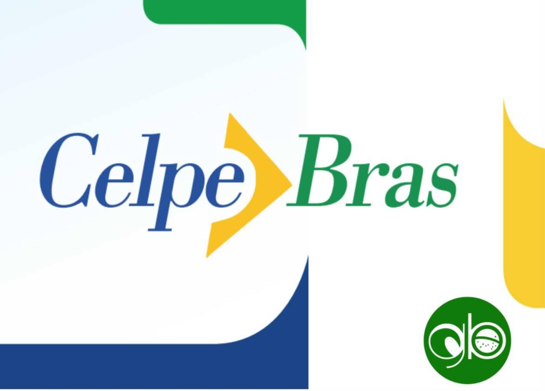 celpe-bras-prep-course-icon-e1565015276534.jpg